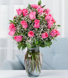 Simply Pink- Two Dozen Long Stemmed Pink Roses