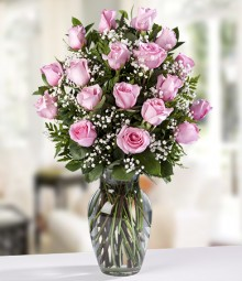 18 Long Stemmed Colombian Pink Roses